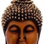 akansha Profile Picture