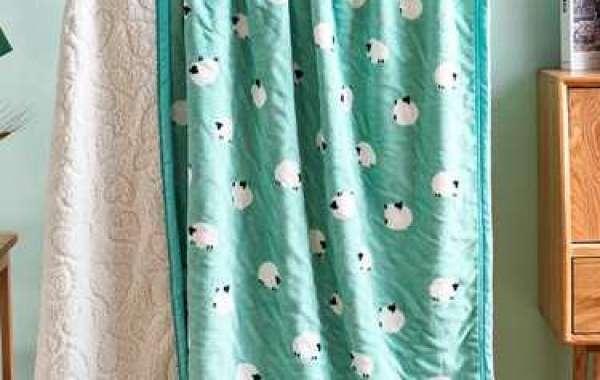 Pv Plush Blanket Fabric
