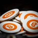 bitcointrendapp41 Profile Picture